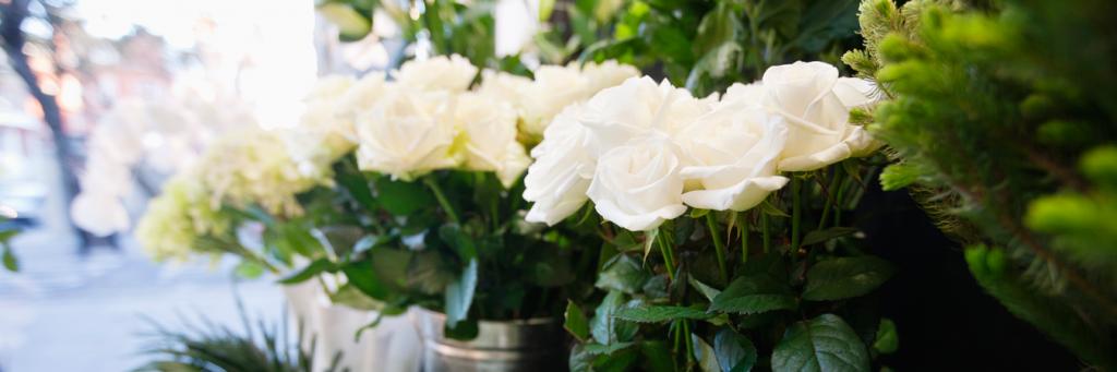 flores villalba