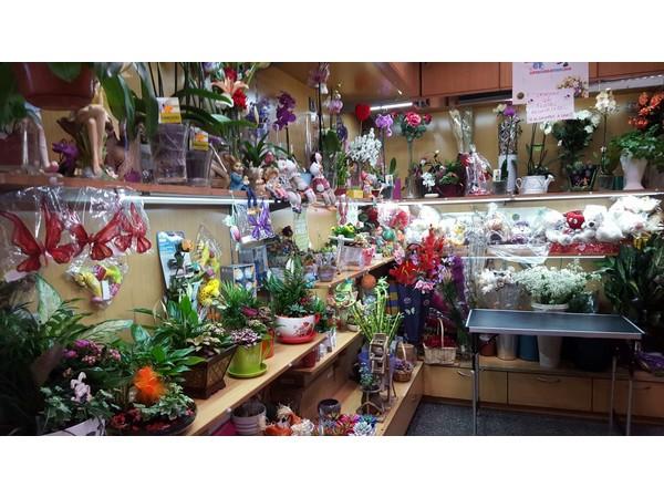 complementos floristería